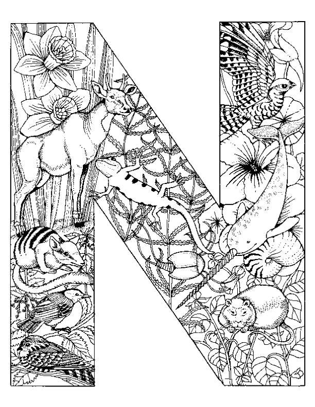 Coloring Pages Animals Alphabet
