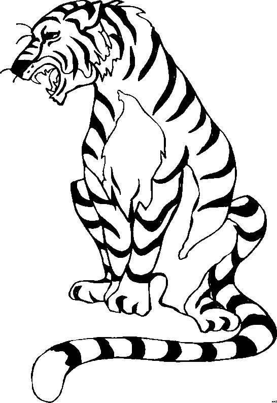 coloring pages cats lions tigers picture 16