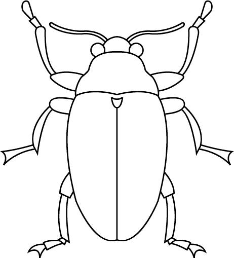 Coloring Pages Insects 3